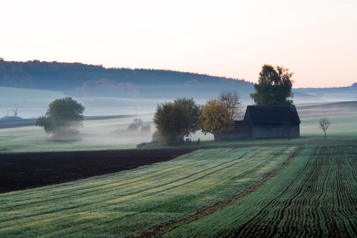Herbst (Foto: Rolf Friedrich pixelio)